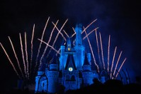 Magic Kingdom Castle, by photog friend, with Creative Commons licence